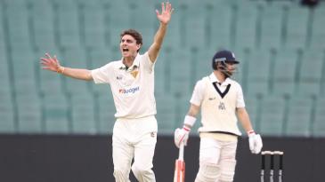 Simon Milenko appeals for the wicket of Matthew Wade