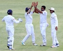 Dilruwan Perera celebrates after taking one of his three wickets, Zimbabwe v Sri Lanka, 2nd Test, Harare, 3rd day, November 8, 2016