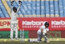 Zafar Ansari was the last man dismissed, trapped lbw by Amit Mishra, India v England, 1st Test, Rajkot, 2nd day, November 10, 2016