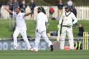 Vernon Philander appeals against Usman Khawaja, Australia v South Africa, 2nd Test, Hobart, 3rd day, November 14, 2016