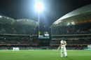 Matthew Wade walks back to the pavilion, Australia v South Africa, 3rd Test, Adelaide, 2nd day, November 25, 2016
