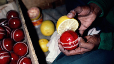 A worker uses lemon juice to shine a cricket ball in Jalandhar
