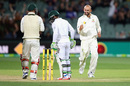 Nathan Lyon is pleased with the wicket of Temba Bavuma, Australia v South Africa, 3rd Test, Adelaide, 3rd day, November 26, 2016
