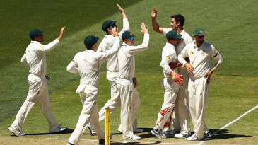 Mitchell Starc is high-fived after having Vernon Philander lbw