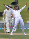 Mohammad Amir celebrates after dismissing Jeet Raval, New Zealand v Pakistan, 2nd Test, Hamilton, 4th day, November 28, 2016