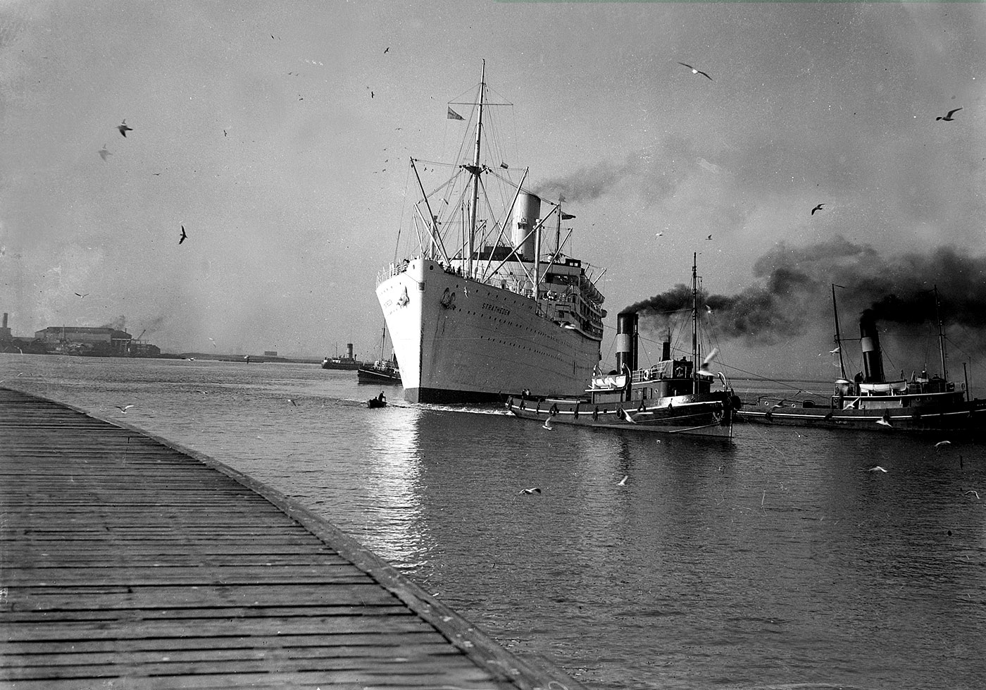 The <i>SS Stratheden</i> being manouvered into port helped by two tugs