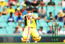 David Warner crouches at the crease, Australia v New Zealand, 1st ODI, Sydney, December 4, 2016