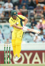 Aaron Finch troubled by a length ball that rears up, Australia v New Zealand, 2nd ODI, Canberra, December 6, 2016