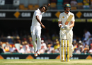 Rahat Ali celebrates after removing Matt Renshaw, Australia v Pakistan, 1st Test, Brisbane, 3rd day, December 17, 2016