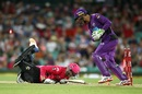 Tim Paine stumps Jason Roy, Sydney Sixers v Hobart Hurricanes, Big Bash League 2016-17, Sydney, December 23, 2016