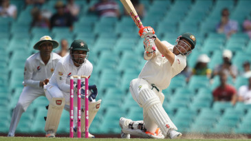 David Warner clobbered three sixes