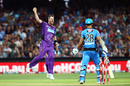 Dan Christian celebrates after removing Jake Weatherald, Strikers v Hurricanes, Big Bash League 2016-17, Adelaide, January 6, 2017