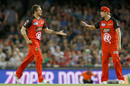 James Pattinson celebrates a wicket with Cameron White, Renegades v Stars, Big Bash League 2016-17, Melbourne, January 7, 2017