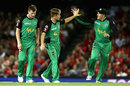 Adam Zampa claimed three wickets in a miserly spell, Melbourne Renegades v Melbourne Stars, Big Bash League 2016-17, Melbourne, January 7, 2017