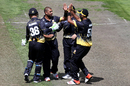 Jeetan Patel celebrates a wicket, Otago v Wellington, The Ford Trophy, Dunedin, January 15, 2017