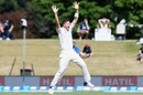 Tim Southee whirls around for an appeal, New Zealand v Bangladesh, 1st Test, Christchurch, 1st day, January 20, 2017