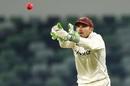 Chris Hartley keeps wicket, Western Australia v Queensland, Sheffield Shield, 3rd day, Perth, December 7, 2016