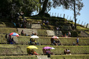 People watching the cricket at picturesque Pukekura Park, Central Districts v Northern Districts, The Ford Trophy, Pukekura Park, New Plymouth, February 4, 2017