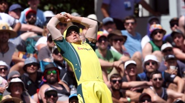 Marcus Stoinis nearly pulled off a spectacular catch at deep midwicket