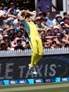 Marcus Stoinis nearly pulled off a spectacular catch at deep midwicket, New Zealand v Australia, 3rd ODI, Hamilton, February 5, 2017