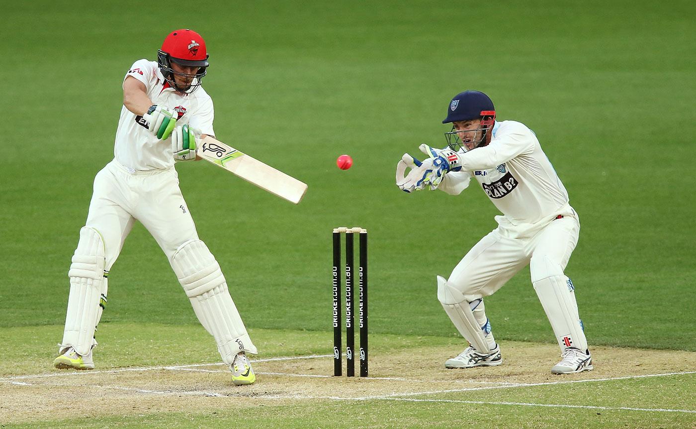 cricket - photo #22