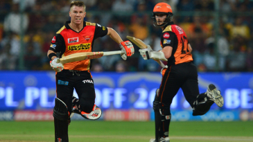 David Warner and Kane Williamson added 50 runs for the second wicket