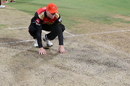 David Warner inspects the pitch after rain stopped, Sunrisers Hyderabad v Kolkata Knight Riders, Eliminator, IPL 2017, Bangalore, May 17, 2017