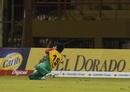 Rashid Khan gets down to take a catch, Jamaica Tallawahs v Amazon Guyana Warriors, CPL 2017, Providence, August 17, 2017