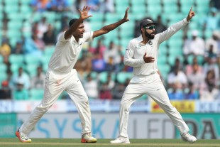 Got to be out: R Ashwin and Virat Kohli go up in appeal