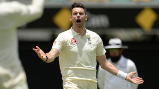 James Anderson is ecstatic after sniping out Tim Paine