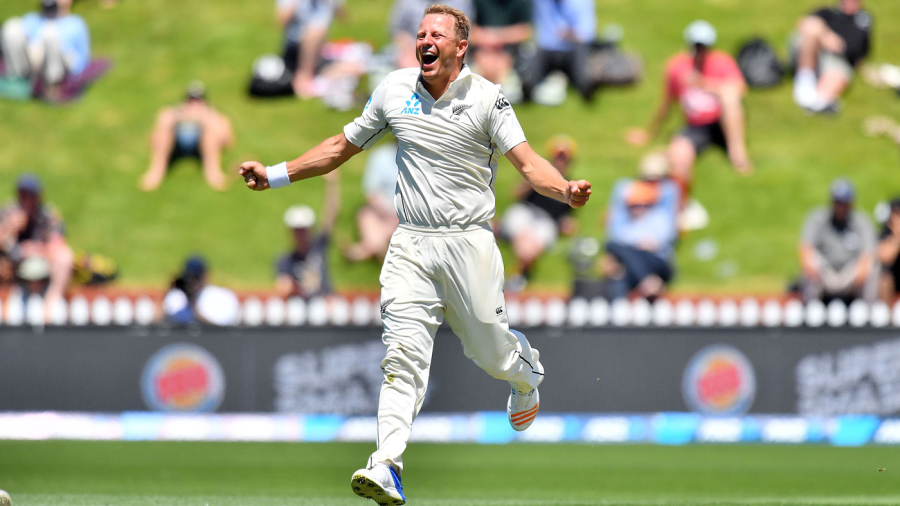 Neil Wagner rejoices after having Roston Chase caught at leg slip