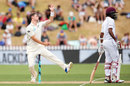 Matt Henry gets into his delivery stride, New Zealand v West Indies, 1st Test, Wellington, 3rd day, December 3, 2017