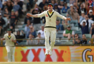 David Warner celebrates a wicket as Australia close in