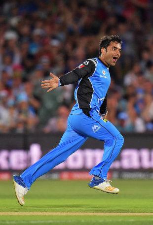 Rashid Khan celebrates his maiden BBL wicket