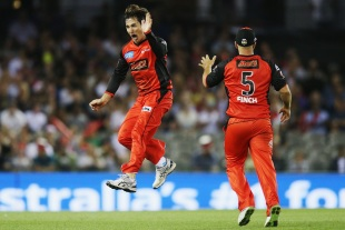 Brad Hogg wheels away after taking a wicket