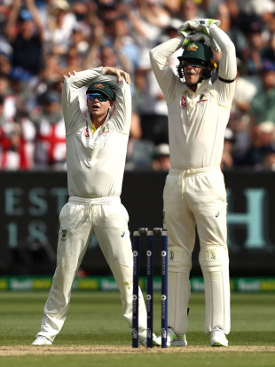 Steven Smith and Tim Paine react in the field