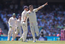James Anderson celebrates his removal of David Warner, Australia v England, 5th Ashes Test, Sydney, 2nd day, January 5, 2018