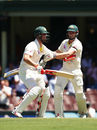 The Marsh brothers get in a tangle while celebrating Mitchell's century, Australia v England, 5th Test, Sydney, 4th day, January 7, 2018