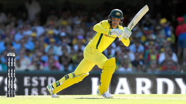 Alex Carey made a good impression on debut