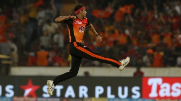 Siddarth Kaul takes flight as he celebrates a wicket