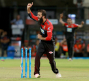 Moeen Ali celebrates a run-out, Kings XI Punjab v Royal Challengers Bangalore, IPL 2018, Indore, May 14, 2018