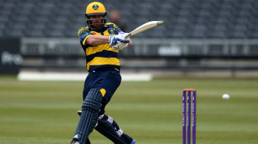 David Lloyd could not quite carry Glamorgan home