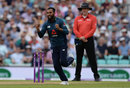 Adil Rashid celebrates the wicket of Marcus Stoinis, England v Australia, 1st ODI, Kia Oval, June 13, 2018