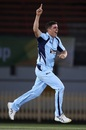 Sean Abbott celebrates a wicket, New South Wales v Tasmania, JLT One-Day Cup, Sydney, September 25, 2018