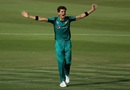 Shaheen Afridi roars after taking a wicket, Pakistan v New Zealand, 1st ODI, Abu Dhabi, November 7, 2018