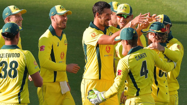 Mitchell Starc celebrates a wicket with his team-mates