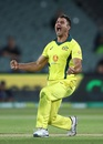 Marcus Stoinis is pumped, Australia v South Africa, 2nd ODI, Adelaide, November 9, 2018