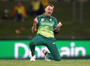 Dale Steyn is pumped after delivering Australia another blow, Australia v South Africa, 3rd ODI, Hobart, November 11, 2018