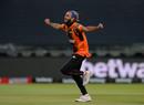 Imran Tahir goes off in celebration, Cape Town Blitz v Nelson Mandela Bay Giants, MSL 2018, Cape Town, November 21, 2018