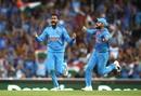 Krunal Pandya and Virat Kohli celebrate Ben McDermott's wicket, Australia v India, 3rd T20I, Sydney, November 25, 2018